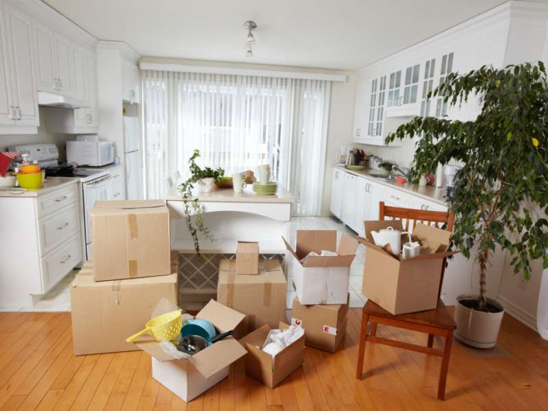 Move-In-Move-Out Cleaning