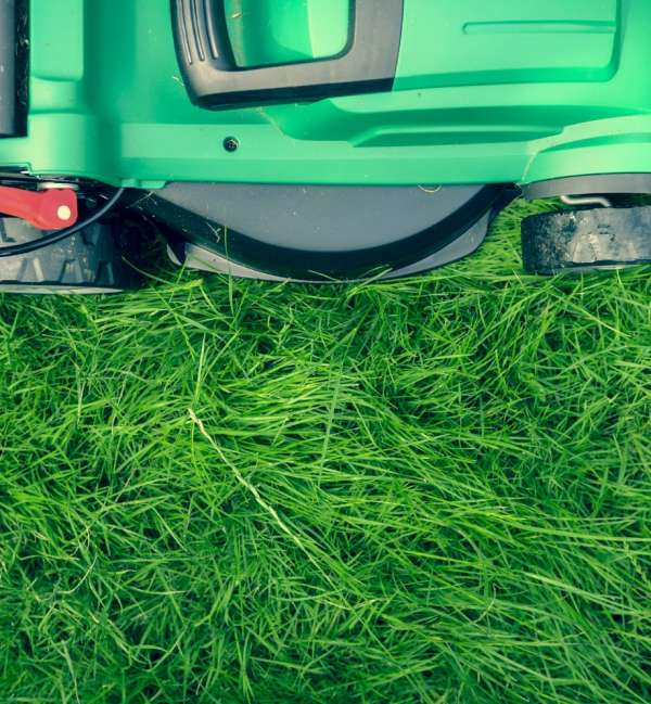 lawn mowing main